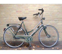 Gazelle Trimmer, Groen Antra